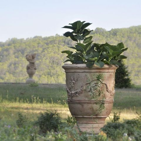 Le Chêne Vert - Anduze vase-Le Chêne Vert-Prestige Antica