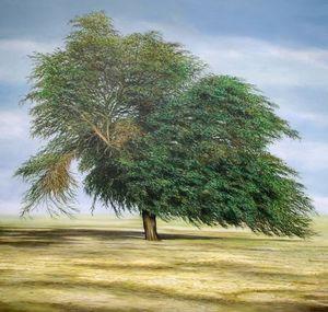 MANUEL CANCEL - qatar's tree - Zeitgenössische Gemälde