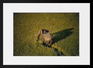 PHOTOBAY - ballade dans les marais - Fotografie