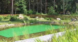 BIOTEICH -  - Traditioneller Swimmingpool