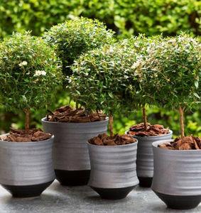 o4Home -  - Garten Blumentopf