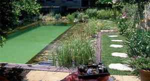 BIOTEICH -  - Landschaftsswimmingpool