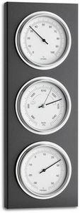 Tfa Dostmann  & Kg -  - Thermo Hygrometer