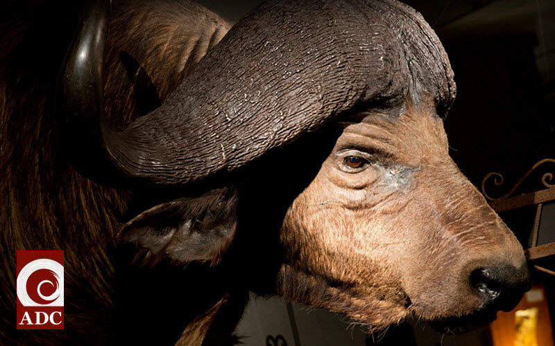 A.D.C. ANTIEK DESIGN CENTRE Escultura de animal Esculturas estatuarias Arte  |