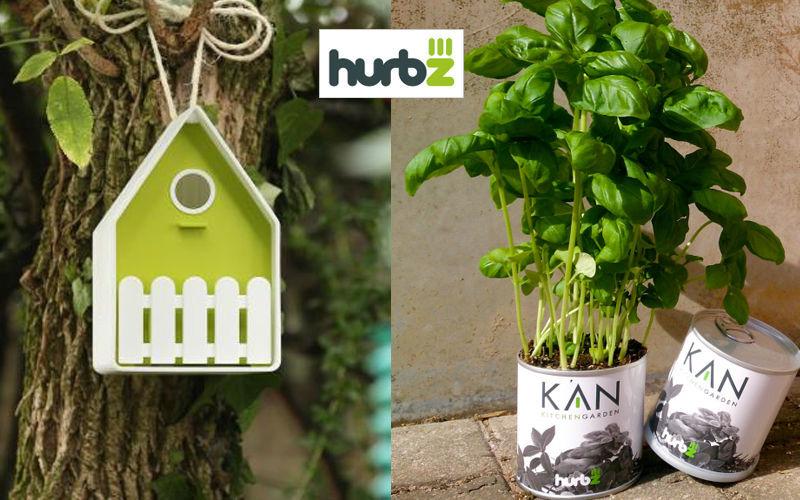 HURBZ Huerto de interior Árboles & plantas Flores y Fragancias  |