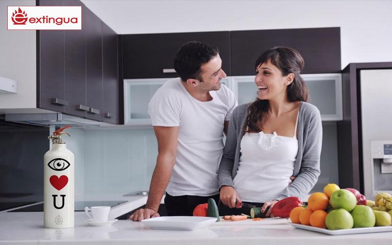 Extingua Extintor Climatizadores & ventiladores Equipo para la casa  |