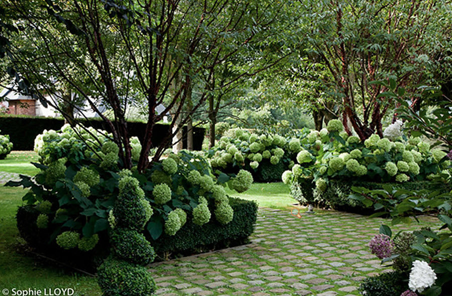 Christian Fournet Jardín paisajístico Creación de jardines Jardín Diverso  |
