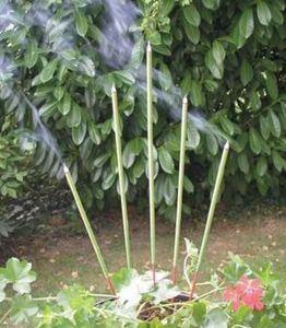 Incienso de jardín