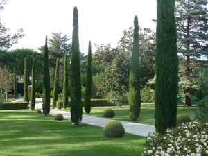 ATELIER NELUMBO -  - Jardín Paisajístico
