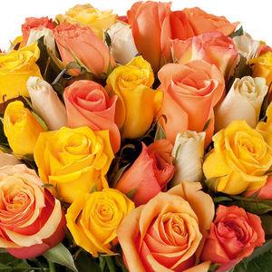Au nom de la Rose - botte de roses - Composición Floral