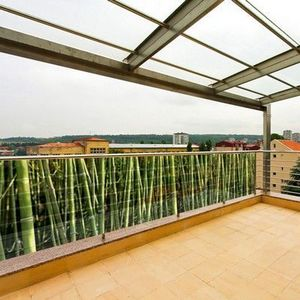 PRISMAFLEX international - brise-vue déco bambou 5m - Visillos A Media Altura