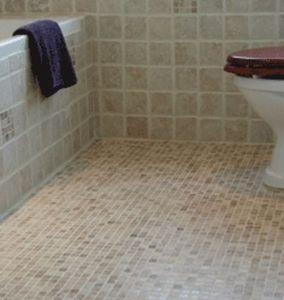 Indegenous -  - Mosaico