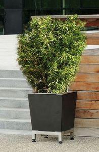 Area -  - Vaso Stile Orangerie
