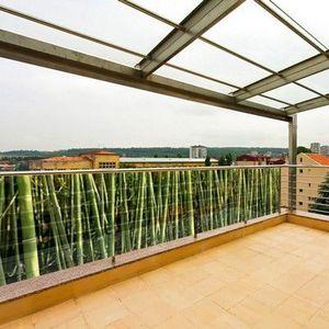 PRISMAFLEX international - brise-vue déco bambou 5m - Frangivista