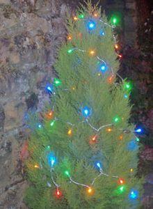 FEERIE SOLAIRE - guirlande solaire 60 leds multicolores à clignotem - Ghirlanda Luminosa