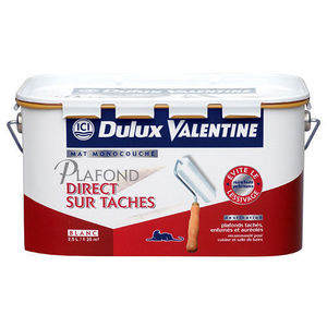 Dulux Valentine - direct sur tâches - Pittura Per Soffitti